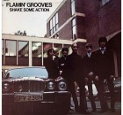 Flamin_Groovies_Shake_Some_Action